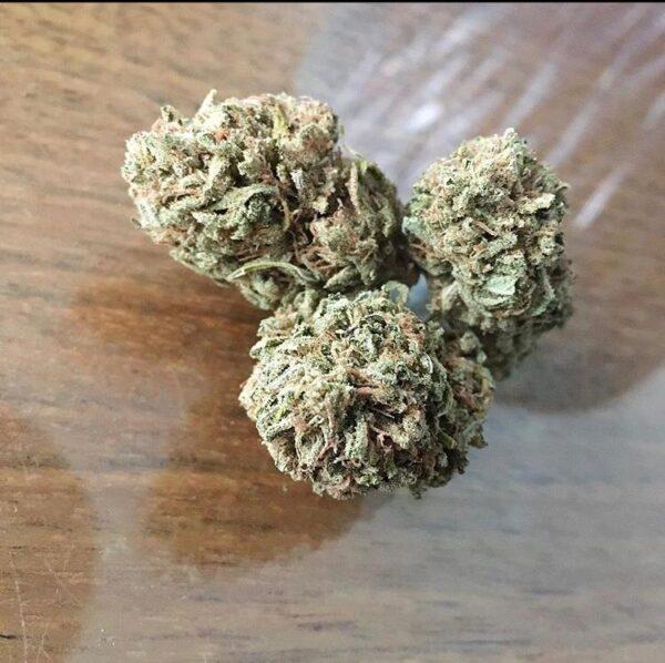 Strawberry Cough, Strawberry Cough Strain strain